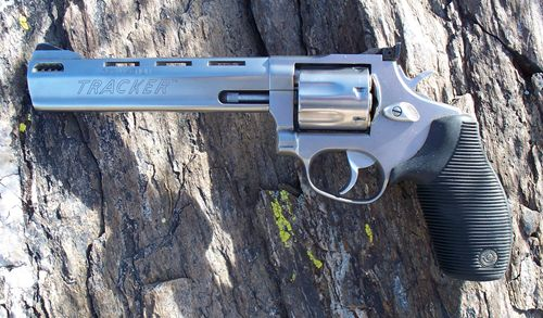 The Best Javelina Hunting Handgun?