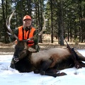 Dan M. Arizona Bull Elk 2015